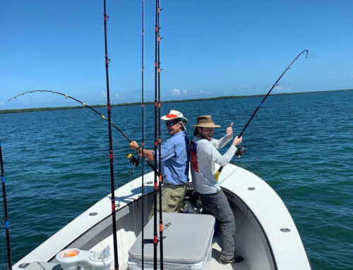 Tips and Tricks to Deep Sea Fishing in Fort Myers