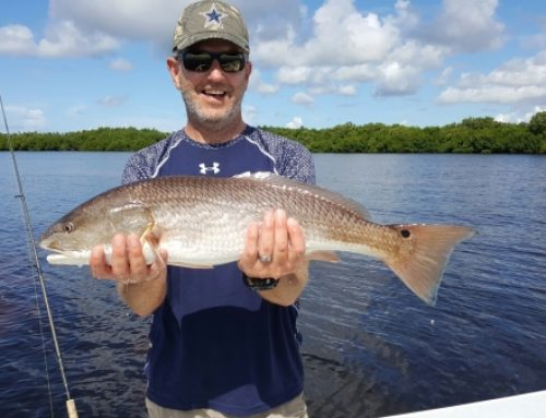 Best fall fort Myers fishing is now