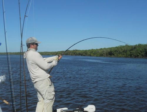 Complete Guide to Snapper Fishing in Fort Myers, FL