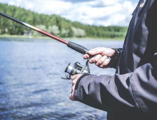 Redfish Fishing Tips in Fort Myers, FL