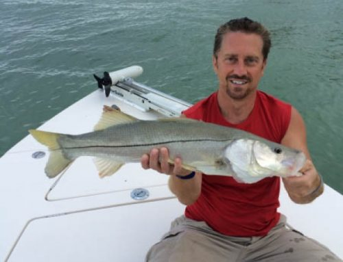 Sanibel Summer snook fishing bite is on in fort Myers