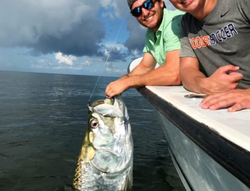 Tarpon fishing Fort Myers in the Fall